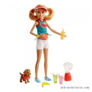 Barbie Sisters Stacie Doll and Smoothie Accessory Set - Sale