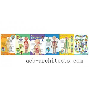 LeapReader™: Interactive Human Body Discovery Set Ages 4-8 yrs. - Sale