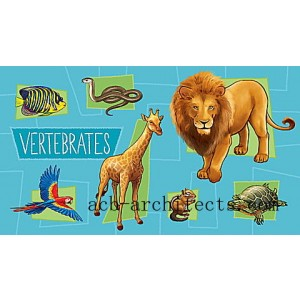 LeapStart® Amazing Animals with Conservation 30+ Page Activity Book Ages 4-6 yrs. - Sale